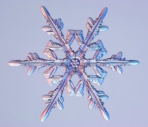 snowflk