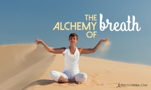 Alchemy-of-Breath